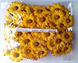 YELLOW 1 50 Artificial Mulberry Paper Sun Flower Scrapbooking Craft 375 cm