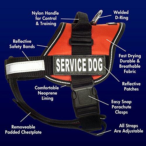 barkOutfitters Service Dog