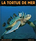 La Tortue de mer