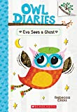 Owl Diaries #2: Eva Sees a Ghost (A Branches Book) - Library Edition