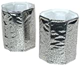 Vacu Vin Rapid Ice Silver Can Chillers, Set of 2