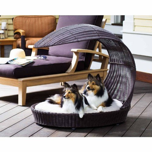 Raised Dog Beds 170084 front