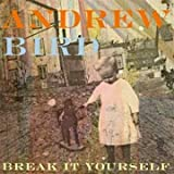 Andrew Bird Break It Yourself