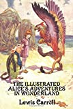 img - for TThe Illustrated Alice's Adventures in Wonderland by Carroll, Lewis (2010) Paperback book / textbook / text book