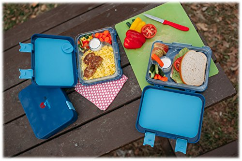 the best bento box for kids adults unique lunch box with 4 different keeps ebay. Black Bedroom Furniture Sets. Home Design Ideas
