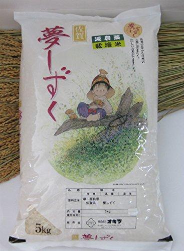 佐賀県 深山棚田米 夢しずく 5kg 白米 27年産