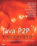 Java P2P Unleashed: With JXTA, Web Services, XML, Jini, JavaSpaces, and J2EE