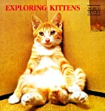 Exploring Kittens