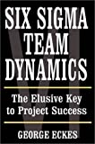 Six sigma team dynamics:the elusive key to project success
