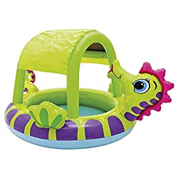 Intex Sea Horse Pool