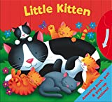 Igloo Books Board Book - Little Kitten - Baby Book (Igloo Books Ltd) (Who am I?)