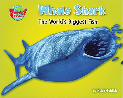 Whale Shark: The World's Biggest Fish (Supersized!)