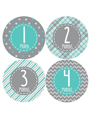 Months in Motion 361 Monthly Baby Stickers Baby Boy Milestone Age Sticker Photo