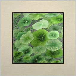 King Silk Art 100% Handmade Embroidery Green Lotus Water Lily Leaves Chinese Print Unframed Landscape Painting Gift Oriental Asian Wall Art Décor Artwork Tapestry Hanging Picture 37099W