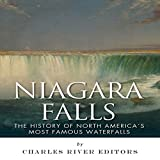 img - for Niagara Falls: The History of North America's Most Famous Waterfalls book / textbook / text book