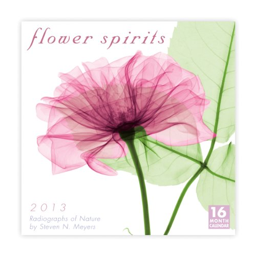 Flower Spirits  2013 Wall (calendar)