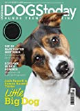 Magazine - Dogs Today