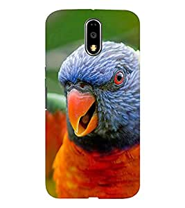 EPICCASE terrific parrot Mobile Back Case Cover For Moto G4 / G4 Plus (Designer Case)
