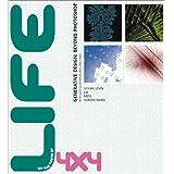 4x4 Generative Design (with Auto-Illustrator, Java, DBN, Lingo): Life/Oblivion