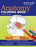 Kaplan Anatomy Coloring Book (1419550403) by Mccann, Stephanie