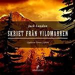 Skriet från vildmarken [The Call of the Wild] | Jack London