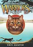 The Forgotten Warrior: Warriors- Omen of the Stars, No. 5