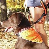 Kurgo LED and Reflective Active Dog Bandana, Large