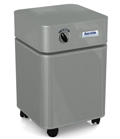 Healthmate Standard Air Purifier (Hm400), Color: Silver