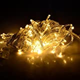 NexScene 8 Modes 10M 100 LED String Fairy Light for Wedding Christmas Party Holiday(Warm White)