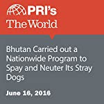 Bhutan Carried out a Nationwide Program to Spay and Neuter Its Stray Dogs | Carol Hills