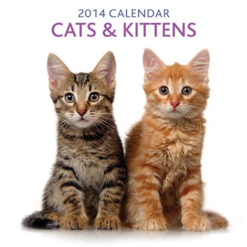 2014 Calendar: Cats & Kittens: 12-Month Calendar Featuring Delightful Photographs of Cats and Kittens