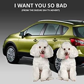 I Want You So Bad (From The Suzuki SX4 TV Advert)