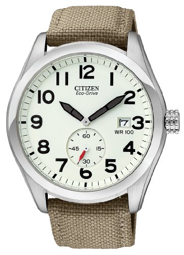 Citizen Men's BV1080-18A