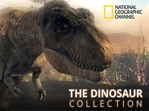 The Dinosaur Collection