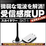 スカイタワー SKT-1