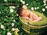 img - for Sweet Dreams Boxed Notecards book / textbook / text book