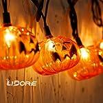 LIDORE Set of 10 Halloween 3D Jack-O-...