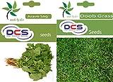 DCS Arave sag & Doob Grass (Pack of 2 Per Pack 1 Grams)