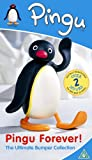 Pingu Forever! The Ultimate Bumper Collection [DVD]