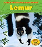 Lemur (Heinemann Read and Learn: a Day in the Life: Rain Forest Animals)