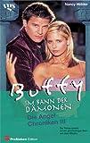 Buffy, Im Bann der Dämonen, Die Angel  Chroniken  3