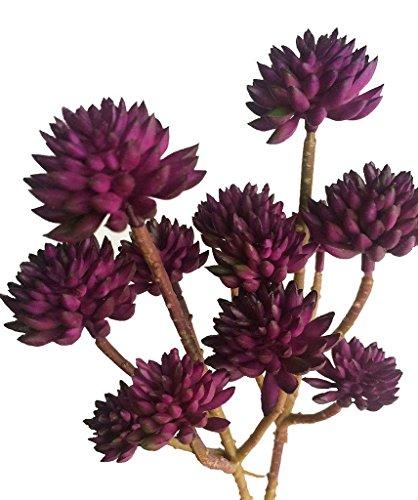 Meiliy 6 Heads Artificial Vinyl Succulent For Home Hotel Office Wedding Party Garden Craft Art Decor, 2 Bunches (Purple)
