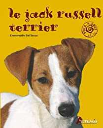 Le  Jack Russell terrier