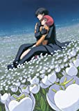 DARKER THAN BLACK -流星の双子- 8 [DVD]