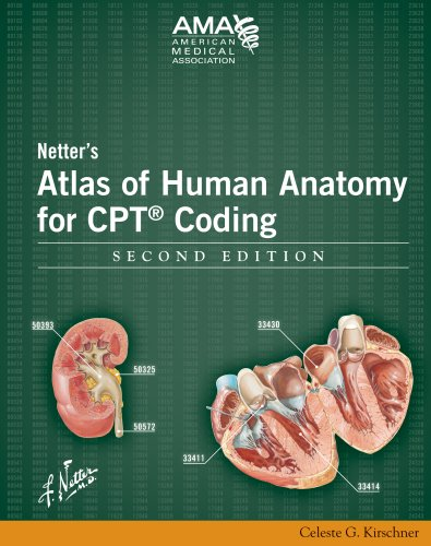 guidelines of chapter 6 cpt Chapter 8 –appeals date topic changes type of change(s) content new topic deletions topic deleted chapter 9 – coding policies and guidelines epni provider policy and procedure manual (12/6/17) ordering forms and manuals hcpcs, cpt and icd-10-cm manuals hcpcs, cpt and icd-10-cm.