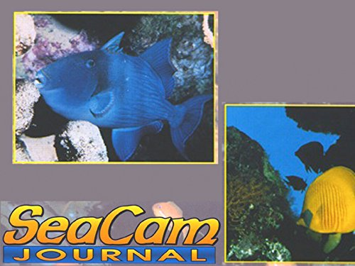 SeaCam Journal - Season 1