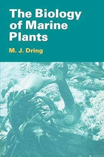 The Biology of Marine Plants Paperback