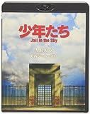 少年たち Jail in the Sky (予約購入先着特典:告知ポスターなし) [Blu-ray]