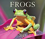img - for Frogs 2015 book / textbook / text book