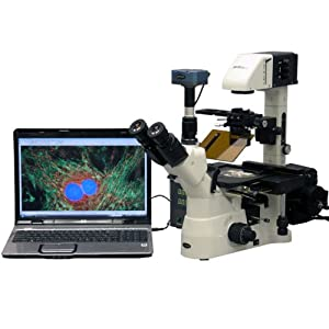 AmScope 40X-1500X Phase Contrast Fluorescence Inverted Microscope + 5MP CCD Fluorescence Camera
